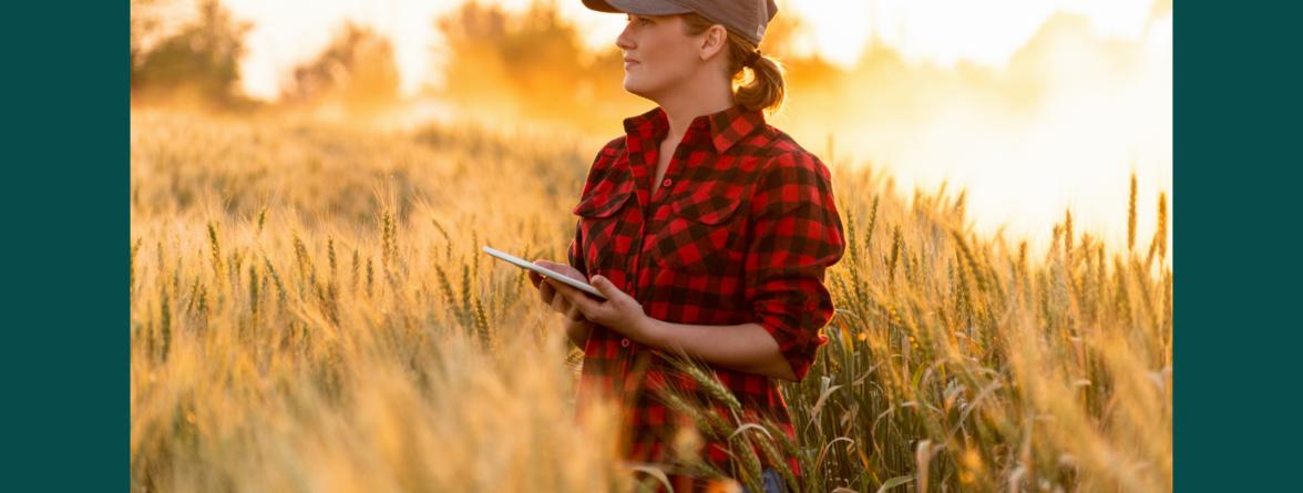 Dotacje rolnik nabory
